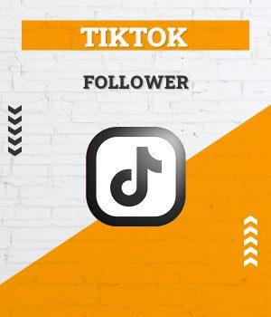 tiktok follower, abos, abonnenten, fans kaufen, tik tok