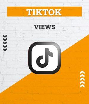 tiktok views aufrufe klicks kaufen